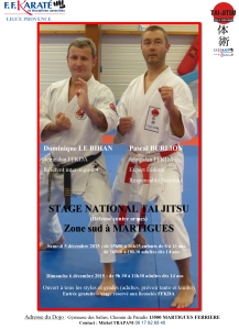 affiche stage national tai jitsu zone sud déc 2015[1]