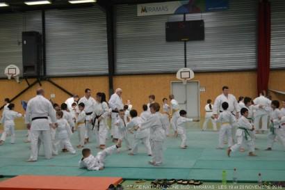 miaramas-2016-stage-tai-jitsu-national-zone-sud-novembre-2016-dsc_0018