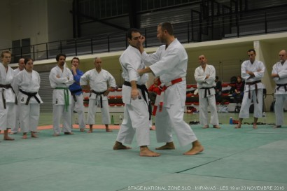 miaramas-2016-stage-tai-jitsu-national-zone-sud-novembre-2016-dsc_0066