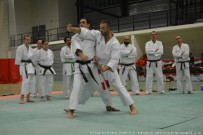 miaramas-2016-stage-tai-jitsu-national-zone-sud-novembre-2016-dsc_0067