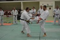 miaramas-2016-stage-tai-jitsu-national-zone-sud-novembre-2016-dsc_0090