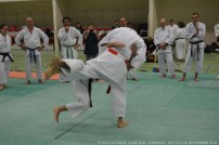 miaramas-2016-stage-tai-jitsu-national-zone-sud-novembre-2016-dsc_0095