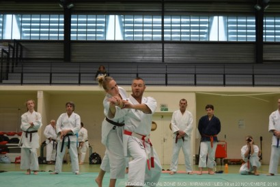 miaramas-2016-stage-tai-jitsu-national-zone-sud-novembre-2016-dsc_0131