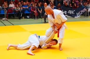 Coupe-de-france-2017-de-taijitsu_SamediPm_MG_6093
