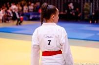 Coupe-de-France-de-taijitsu--2018-gravelines-_MG_4868